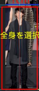 satoutakeru-sintyou-25